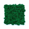 Painting made of medium green reindeer moss in a 25x25cm white wooden frame