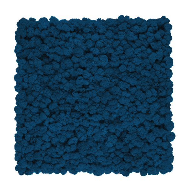 Reindeer moss wall panel 50 x 50cm | color - Blue