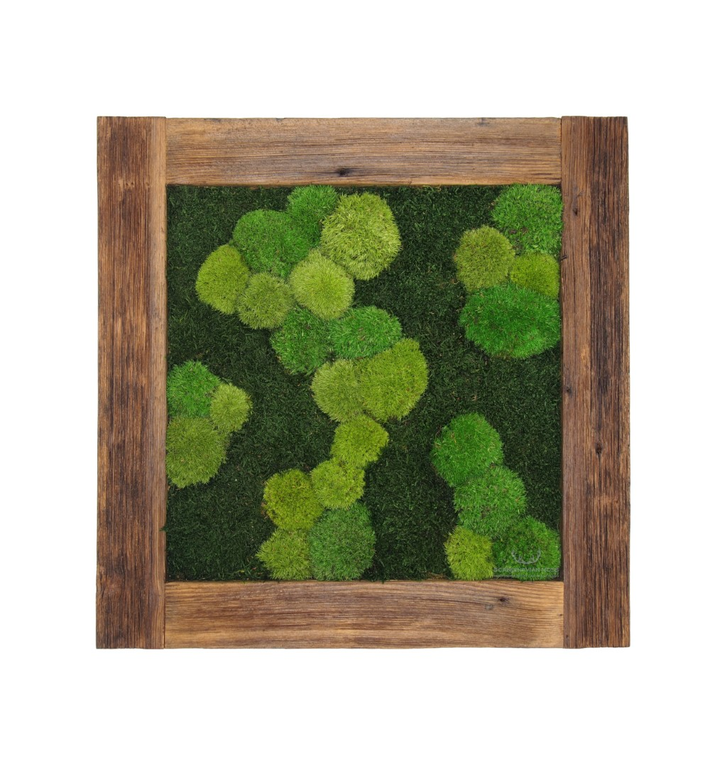 Painting - Wall Art made of pillow and flat moss in a 54x54 cm old wood frame