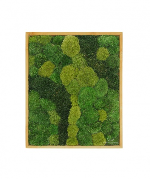 Bun & Flat Moss Painting - Wall Art made of Pillow/bun and flat moss in a 50x40cm bamboo wood frame